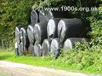 Black polythene bags of hay/silage