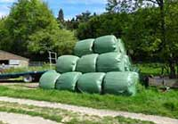 Green polythene bags of hay/silage