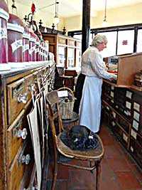 Behind the counter of a Victorian or Edwardian chemist's shop