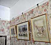 Pictures hanging from picture rails, late 1800s to mid 1900s. Below the picture rails was wallpaper and above was known as a 'drop ceiling' and painted the same colour as the ceiling.
